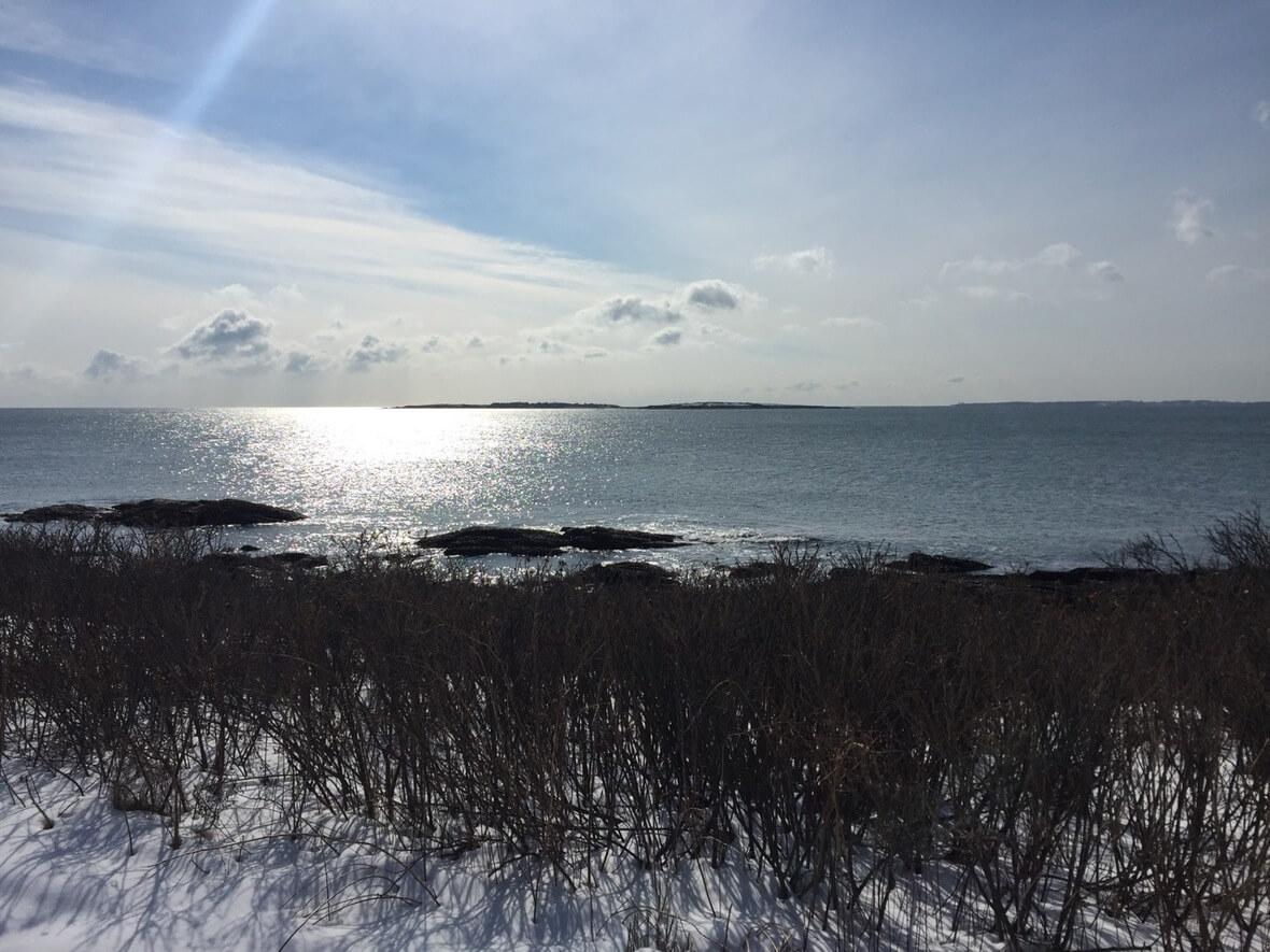 Scarborough Cliff Walk